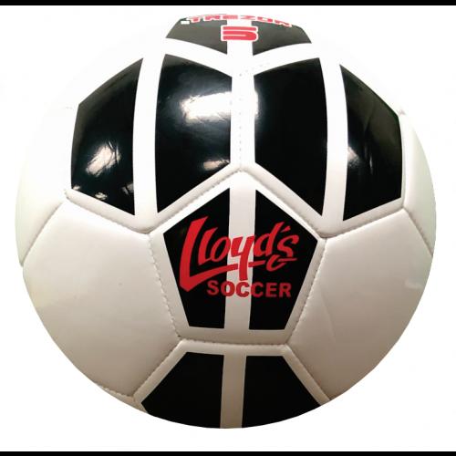 Lloyd's Training ++ Juggle Ball 2019 (24 Pack- Size 2)