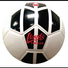 Lloyd's Soccer Ball Size 2