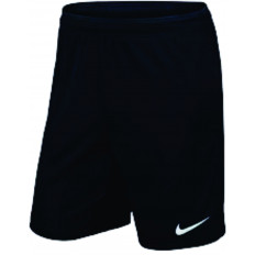 Nike Youth Park Short